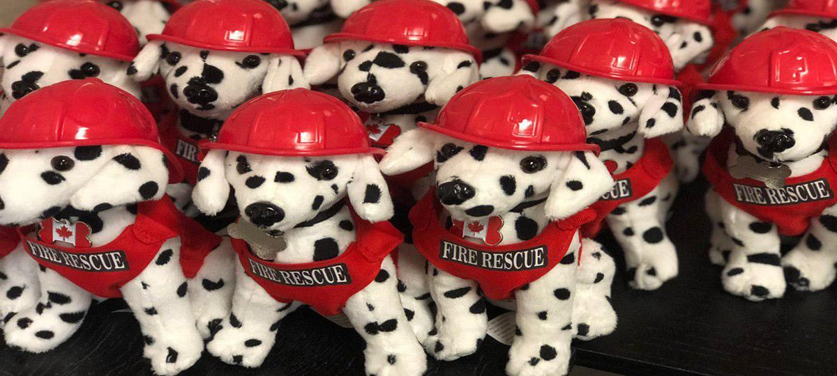 slide-Fire-Dogs-Canada