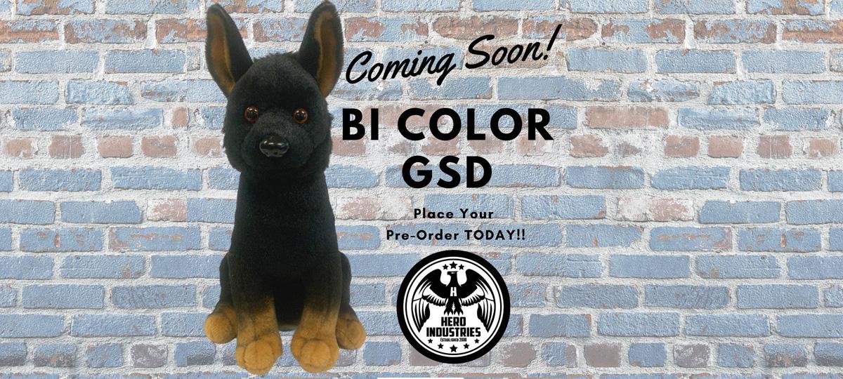 BI Color GSD